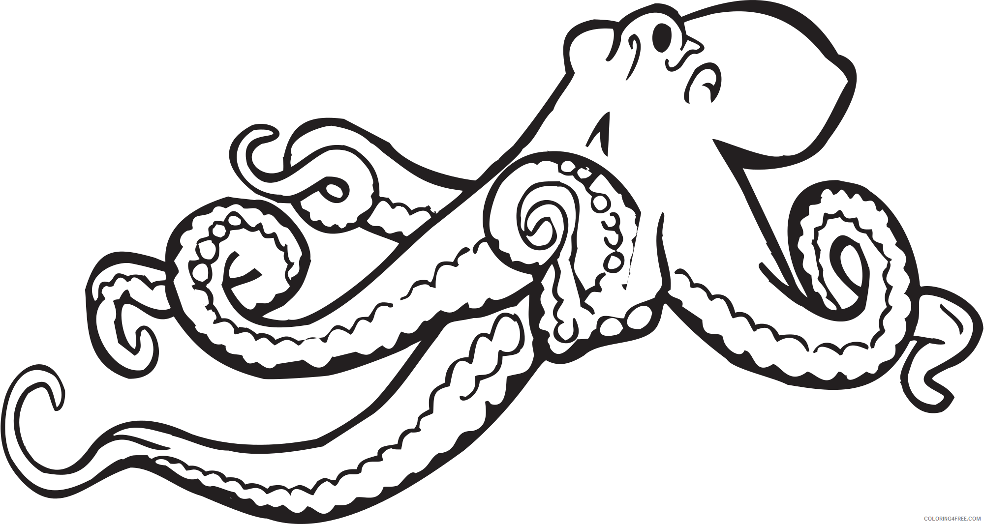Black and White Octopus Coloring Pages octopus illustrations 2 octopus Printable Coloring4free