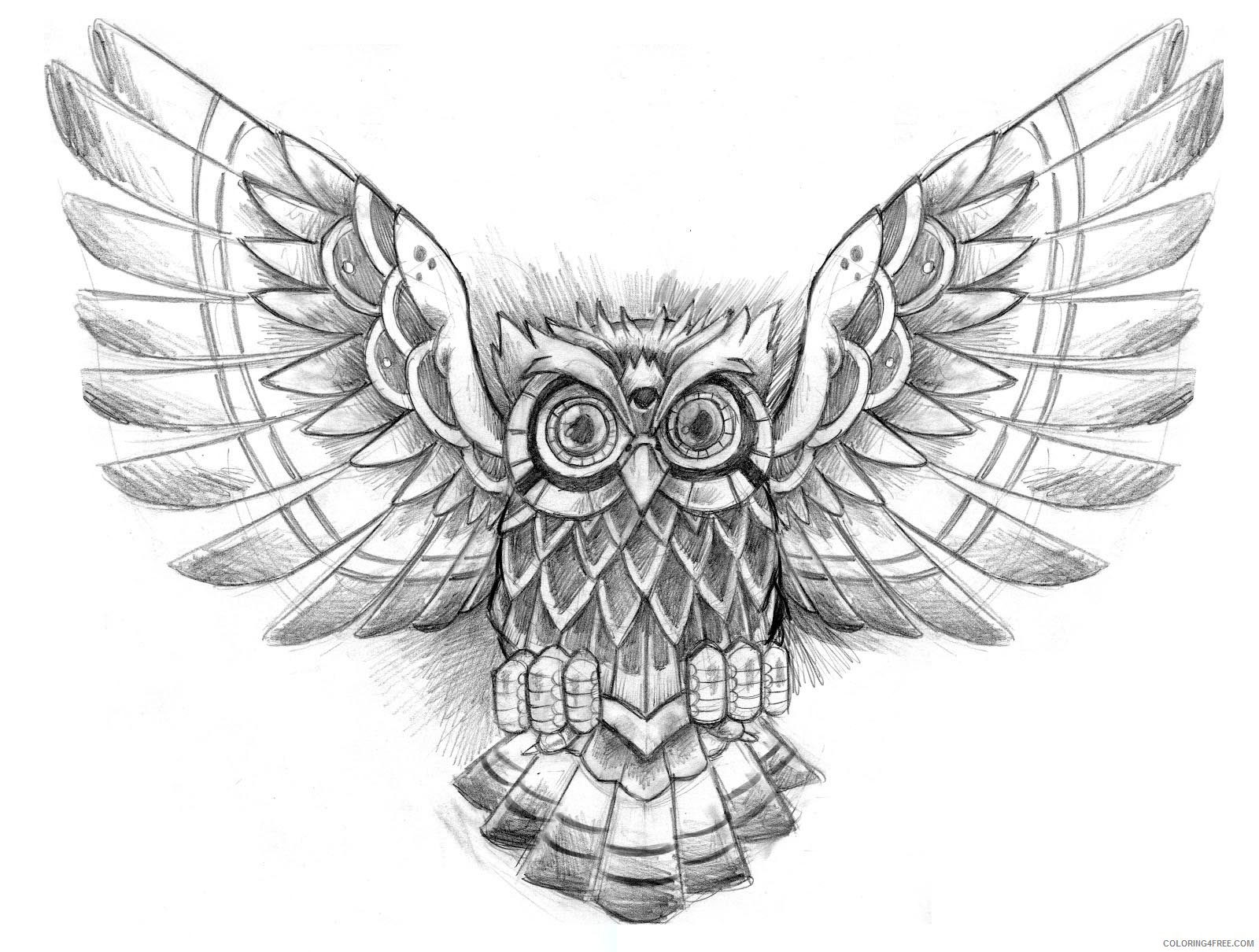 Black And White Owl Coloring Pages Owl Tattoos Designs Ideas And Printable Coloring4free Coloring4free Com