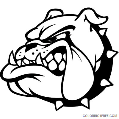 Bulldog Mascot Coloring Pages bulldog mascot bfree Printable Coloring4free