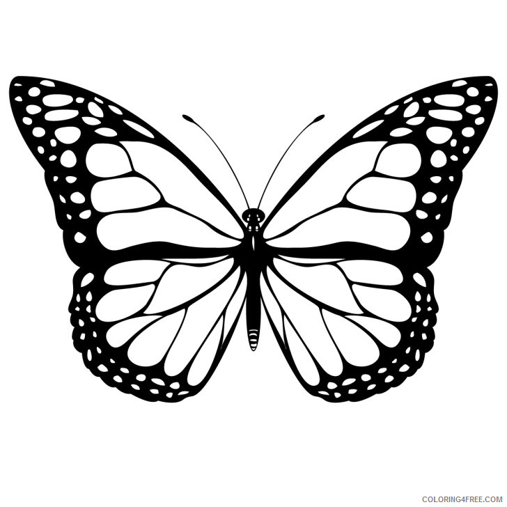Butterfly Large Coloring Pages free butterfly images 582193e6eefbe Printable Coloring4free