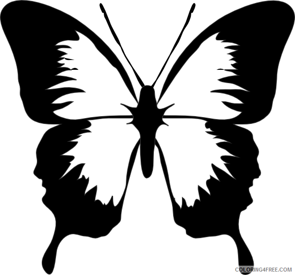 Butterfly Medium Coloring Pages butterfly at Printable Coloring4free