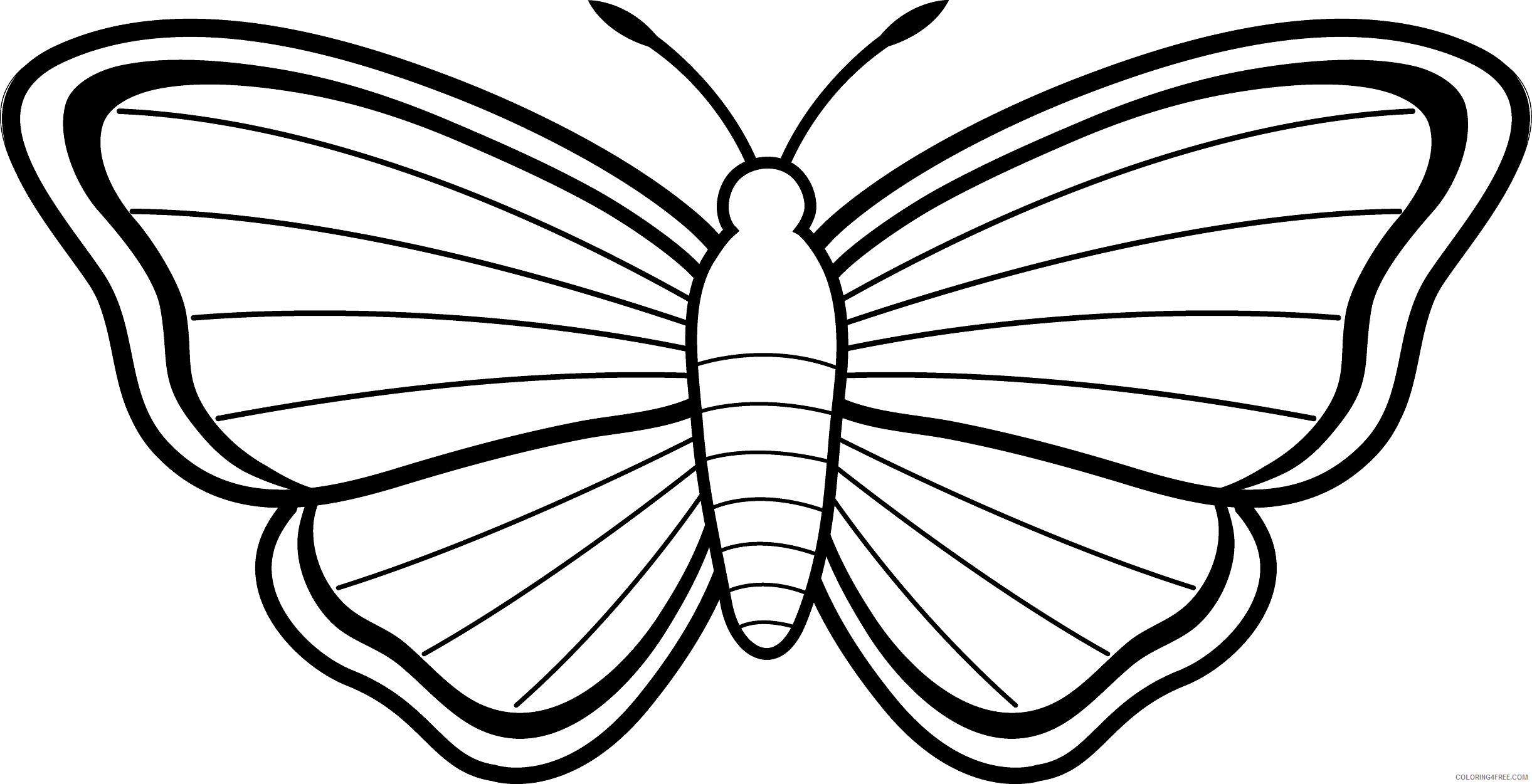 Butterfly Outline Coloring Pages butterfly outline free clipart Printable Coloring4free