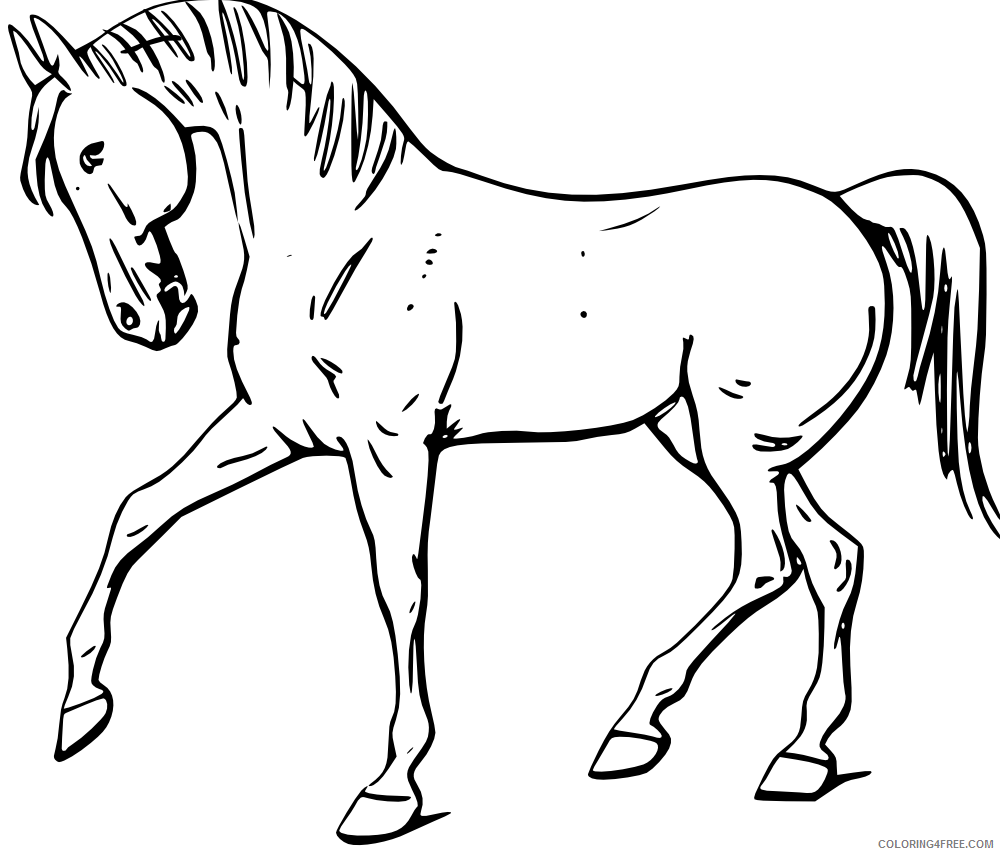 Cartoon Horse Coloring Pages Cartoon horse 2 Printable Coloring4free