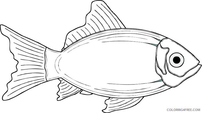 Cod Fish Coloring Pages cod fish page cod Printable Coloring4free