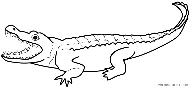 Crocodile Coloring Pages crocodile 11 jpg Printable Coloring4free