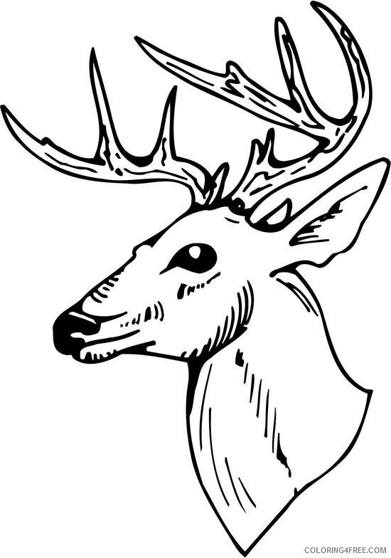 Deer Head Tribal Zentangle Style Coloring Pages | How to draw ... | 784x550