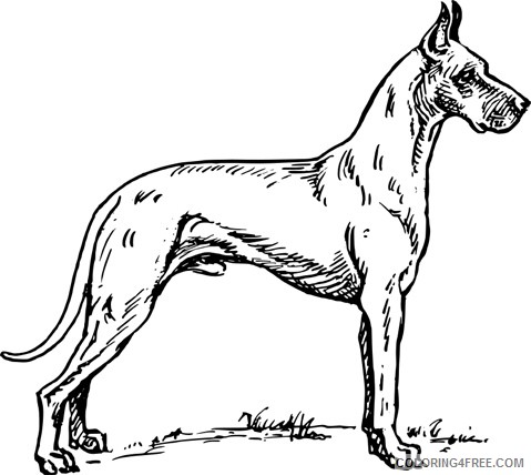 Dog Awesome Coloring Pages Great Dane jpg Printable Coloring4free