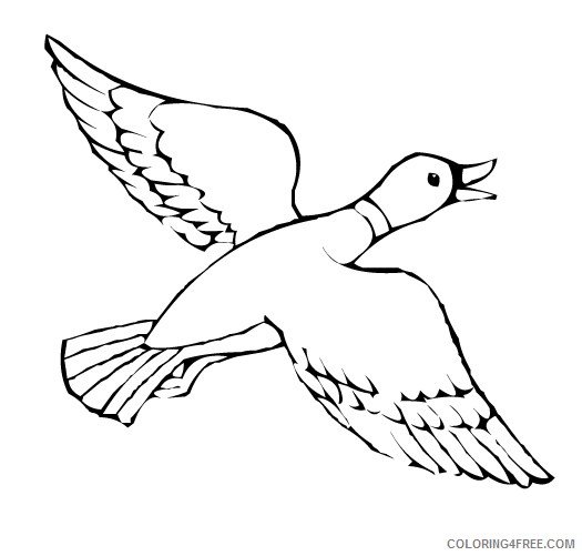 Duck Outline Coloring Pages outline duck jpg Printable Coloring4free