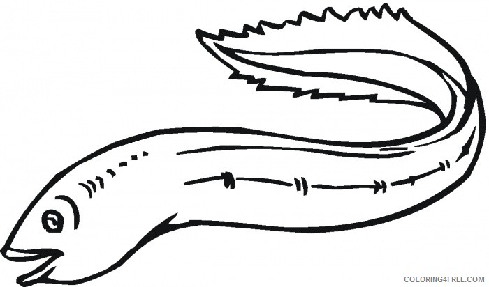 Eel Coloring Pages eel 75 gif Printable Coloring4free