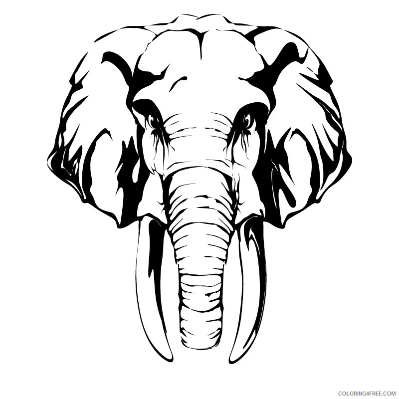 Elephant Head Coloring Pages elephant head drawing best Printable Coloring4free