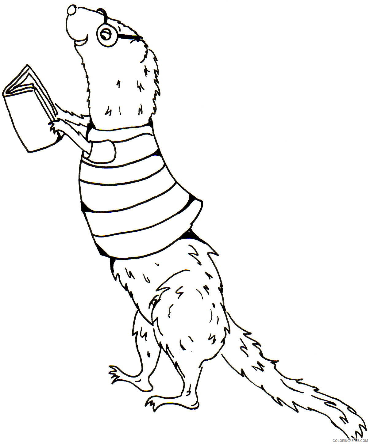 Ferret Coloring Pages ferret 17 jpg Printable Coloring4free