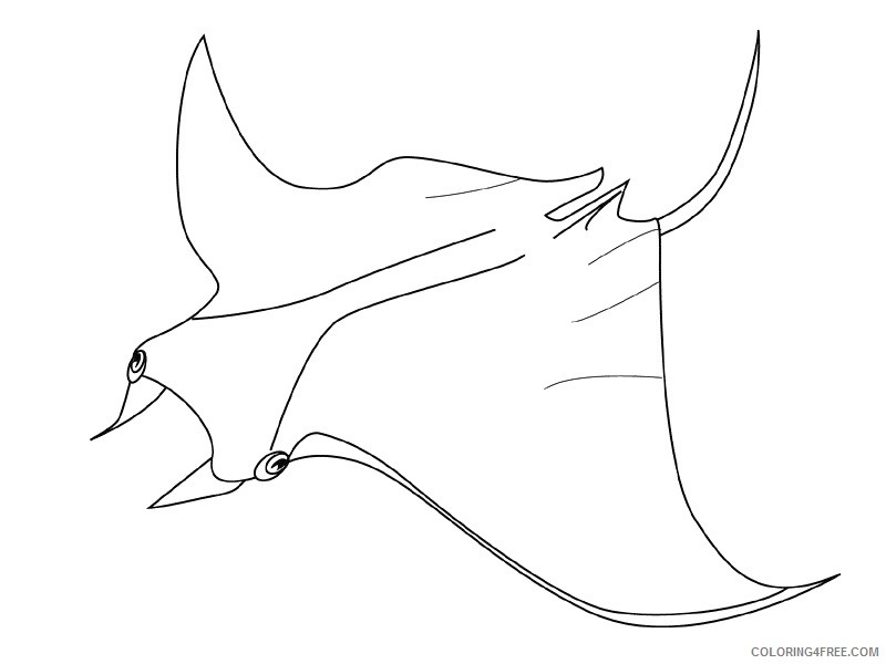Fish Coloring Pages fish animals 22 Printable Coloring4free