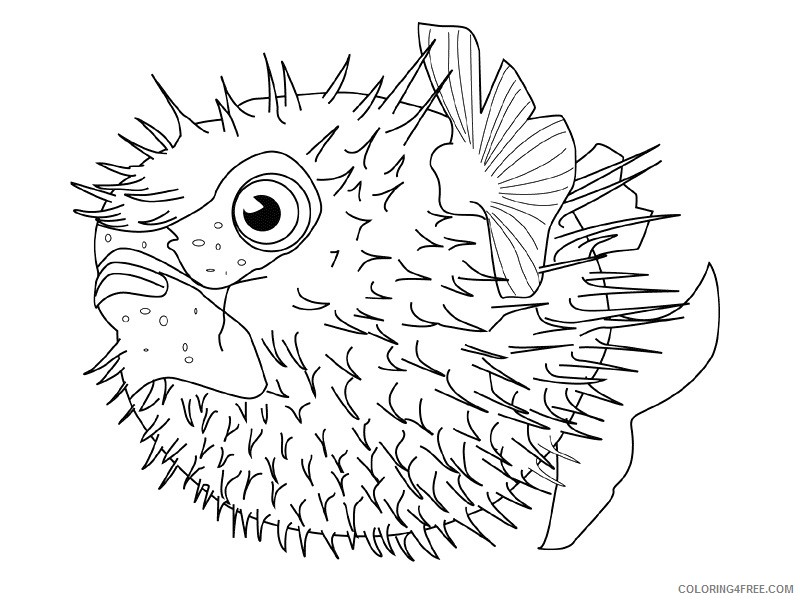 Fish Coloring Pages fish animals 30 Printable Coloring4free