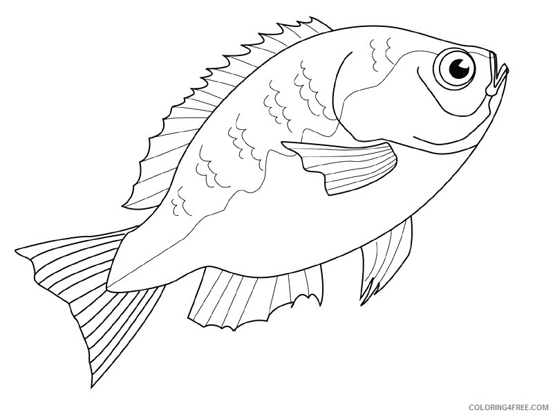 Fish Coloring Pages fish animals 39 Printable Coloring4free