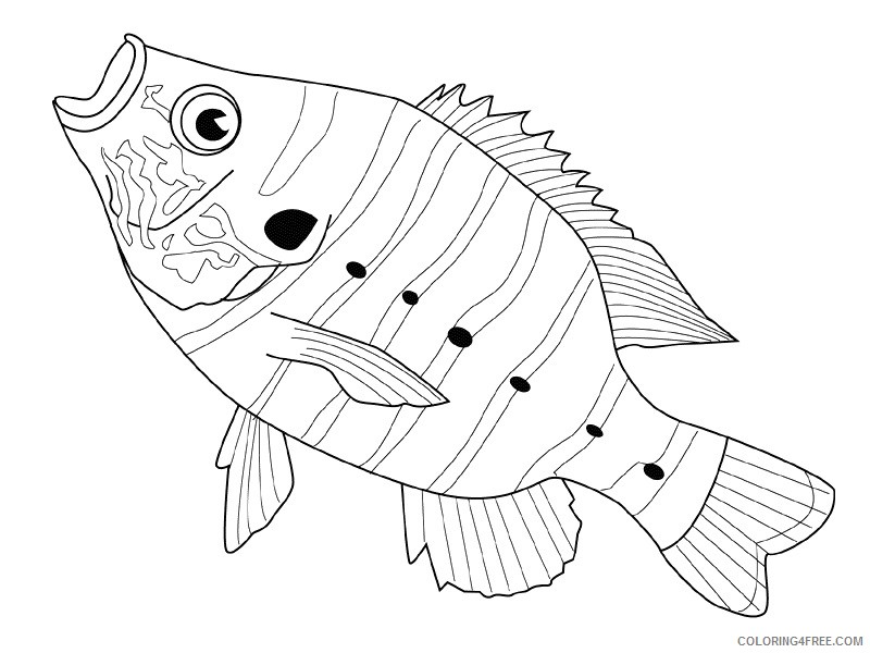 Fish Coloring Pages fish animals 4 Printable Coloring4free