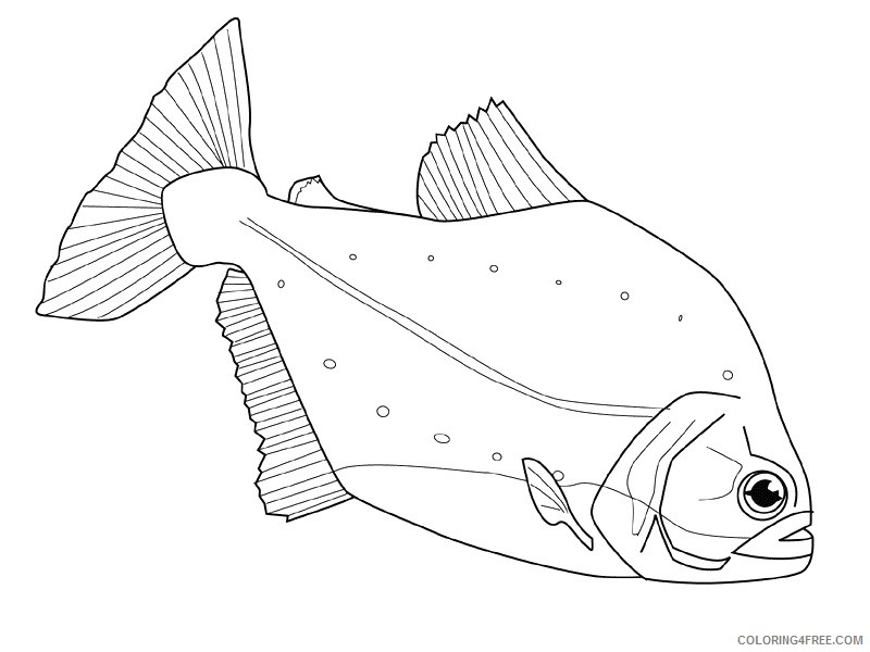 Fish Coloring Pages fish animals 5 Printable Coloring4free