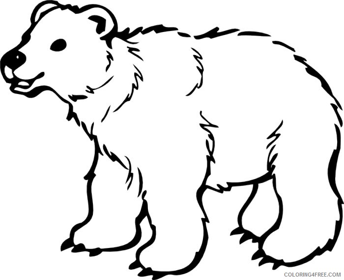 Grizzly Bear Coloring Pages Grizzly bear silvertip bear clipart Printable Coloring4free