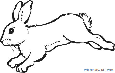 Hare Coloring Pages hare snowshoe hare drawing Printable Coloring4free