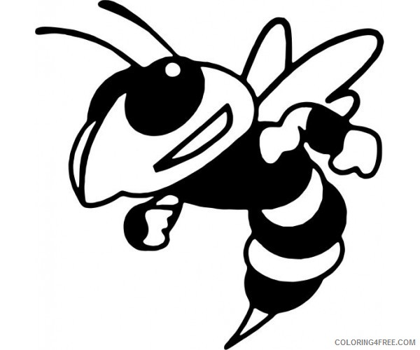Hornet Coloring Pages hornet 78 jpg Printable Coloring4free