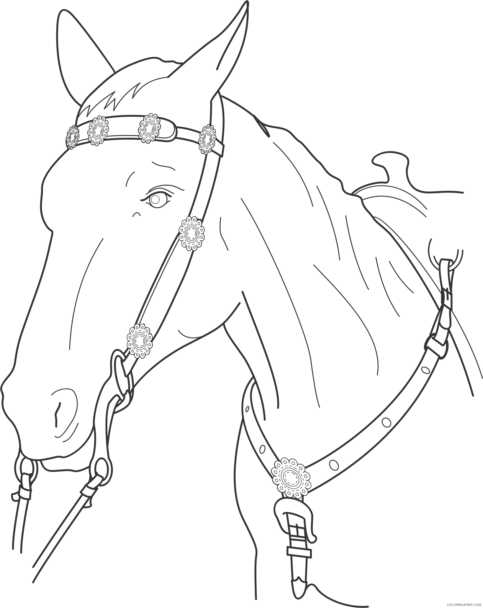 Horse Coloring Pages chest plate for horse Printable Coloring4free