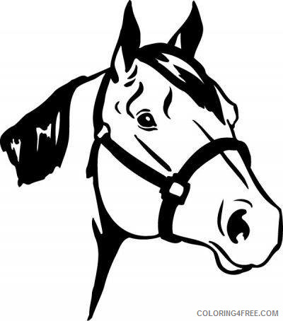 Horse Medium Coloring Pages horse breed descriptions 9VoHmC clipart Printable Coloring4free