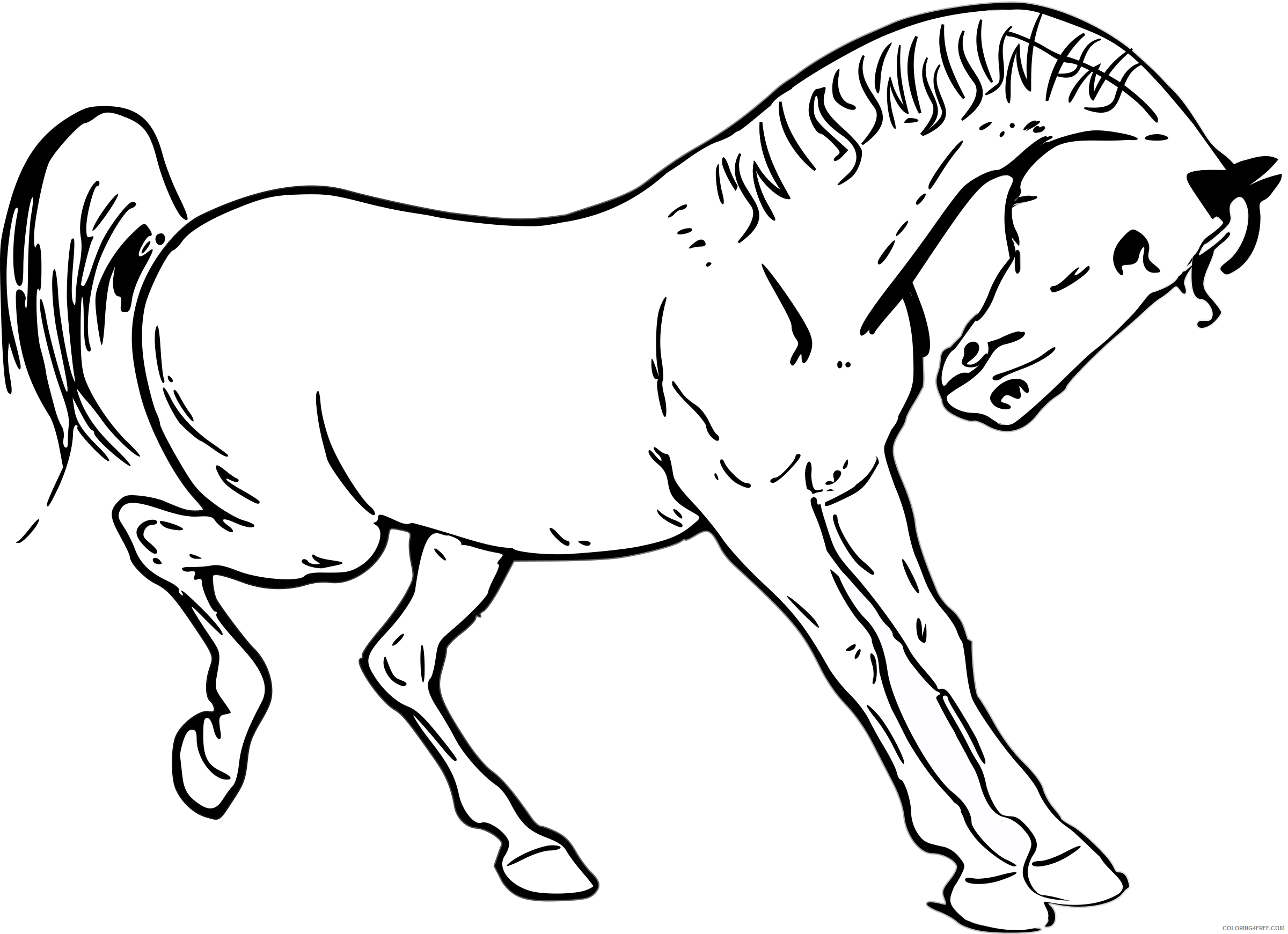 Horse Outline Coloring Pages prancing horse outline by warszawianka Printable Coloring4free