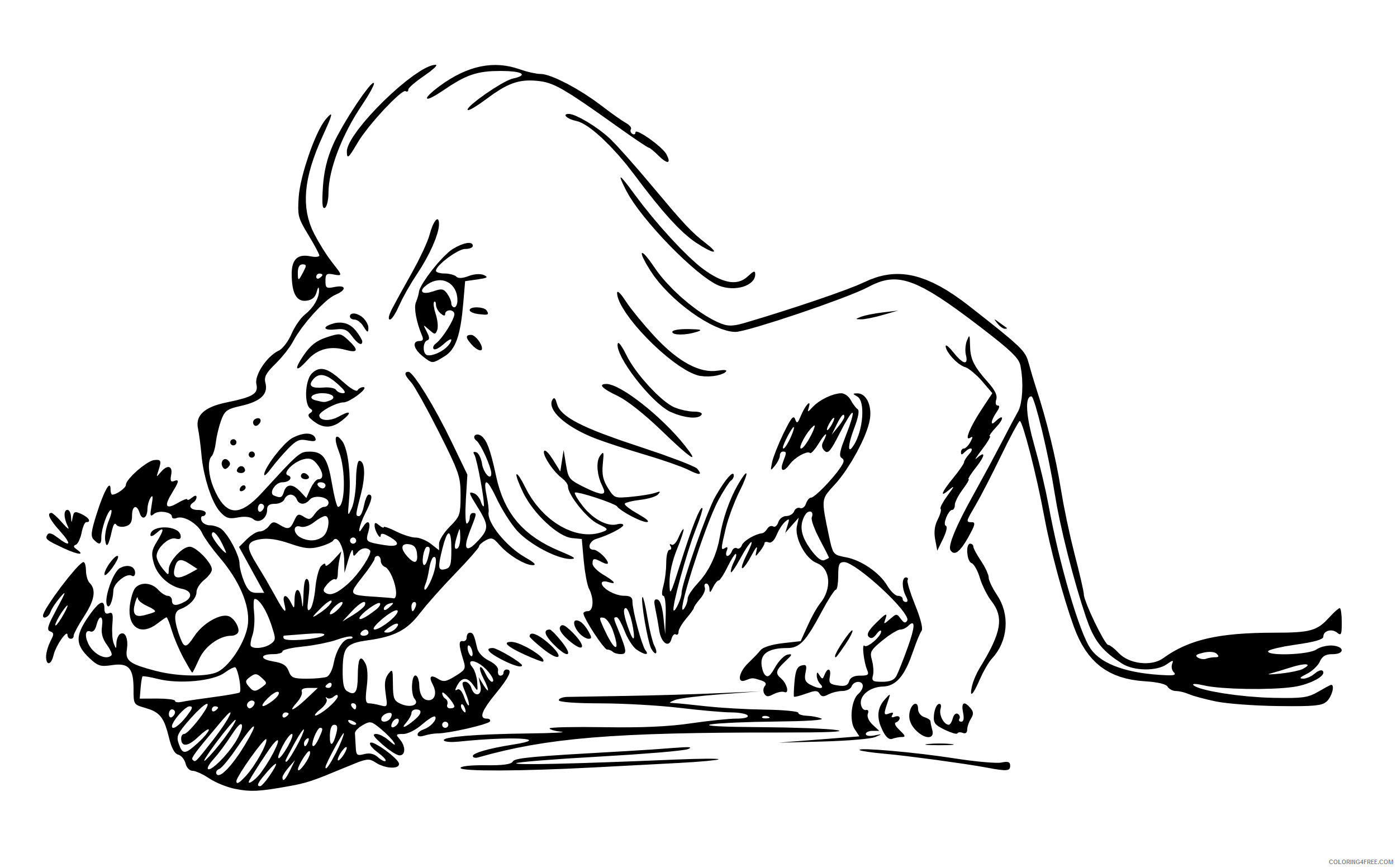 Hungry Lion Coloring Pages hungry lion Printable Coloring4free