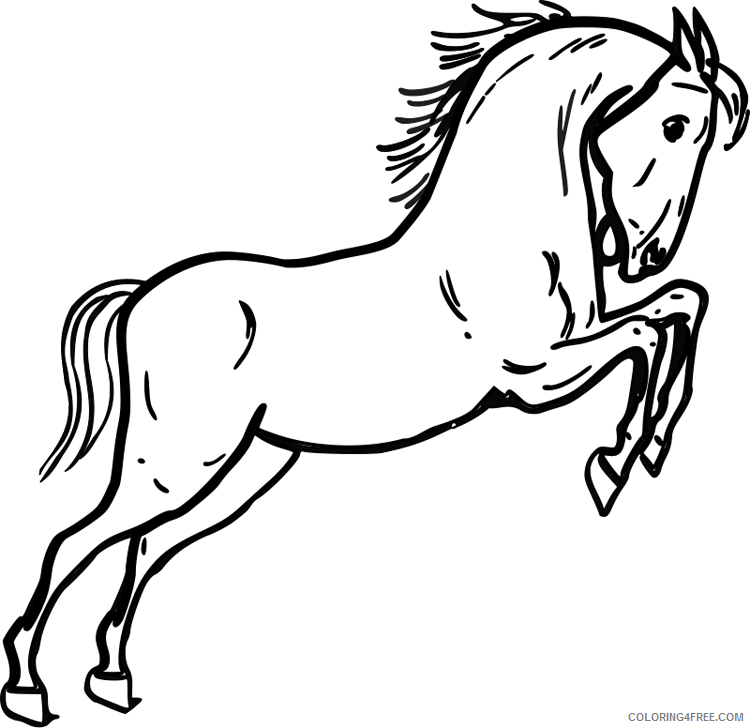 Jumping Horse Coloring Pages jumping horse page purple Printable Coloring4free