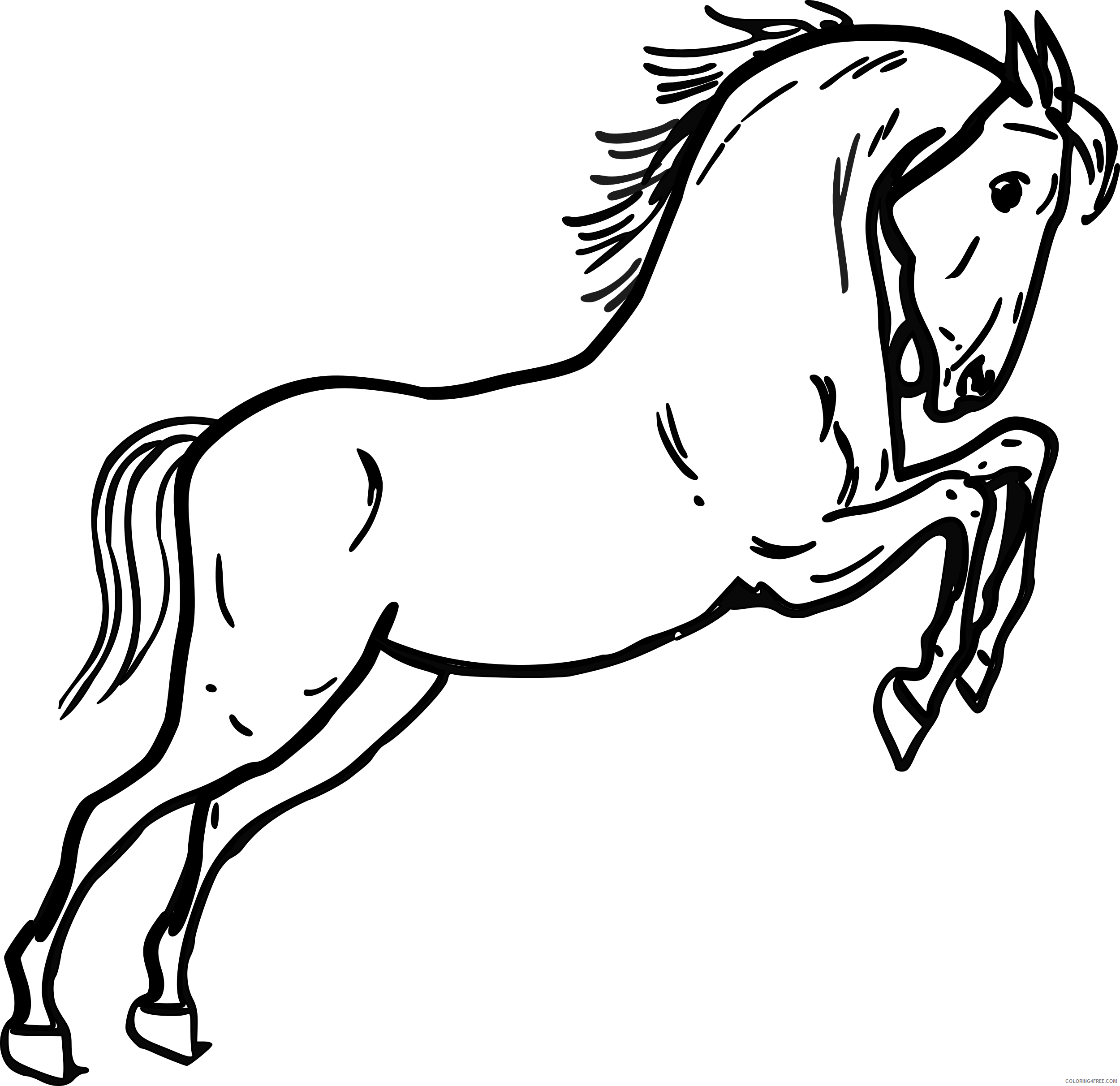 Jumping Horse Coloring Pages warszawianka jumping horse outline Printable Coloring4free