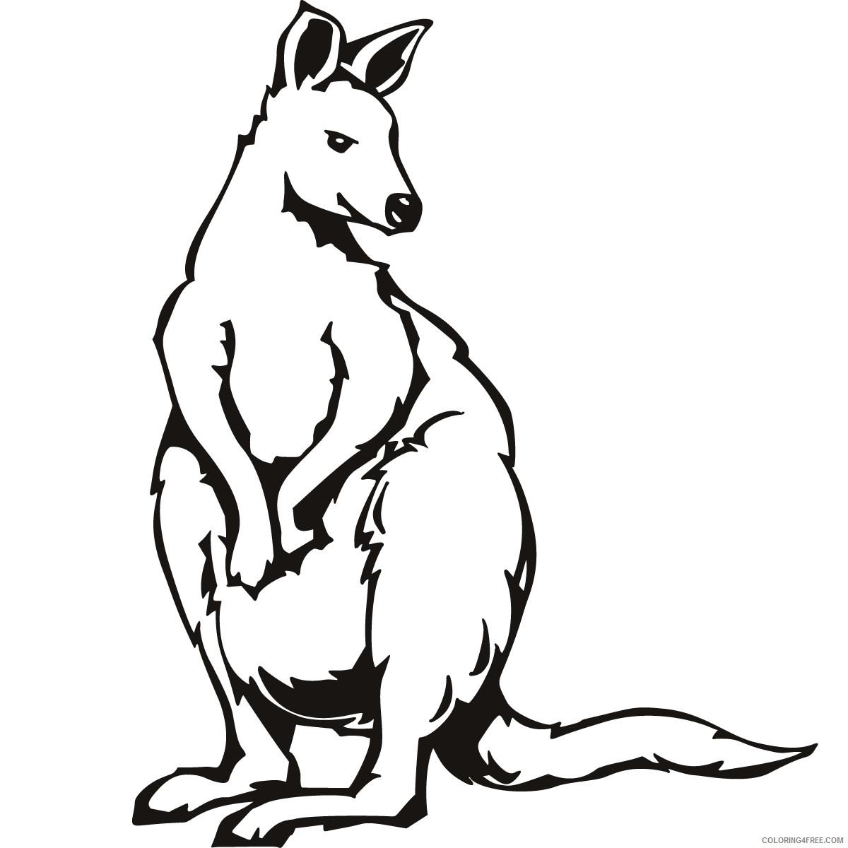 Kangaroo Outline Coloring Pages kangaroo outline 8eMg6U jpg Printable Coloring4free