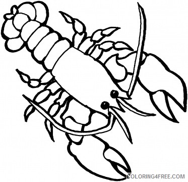 Lobster Outline Coloring Pages lobster 78 jpg Printable Coloring4free