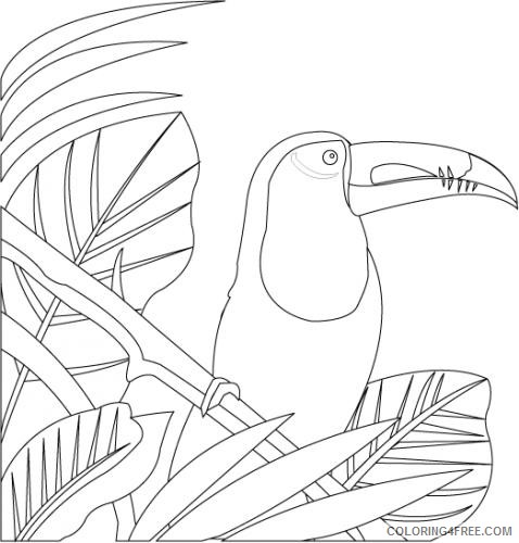 Toucan coloring page | Free Printable Coloring Pages | 500x478