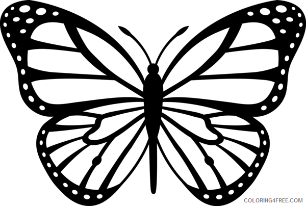Monarch Butterfly Coloring Pages monarch butterfly black white free Printable Coloring4free
