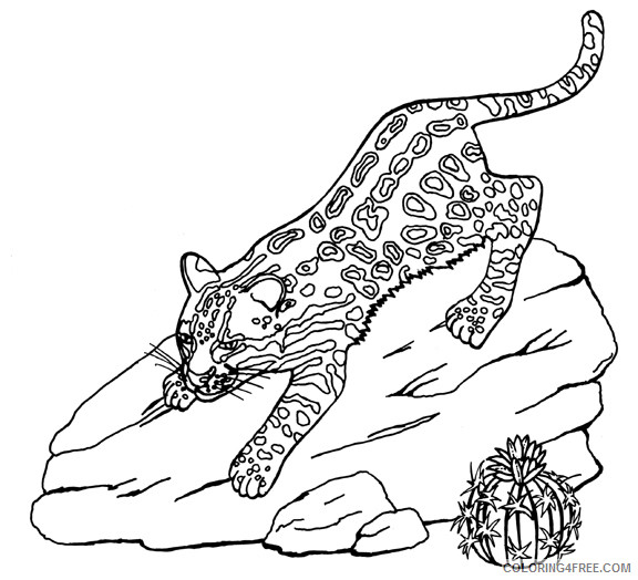 Ocelot Coloring Pages ocelot 39 jpg Printable Coloring4free