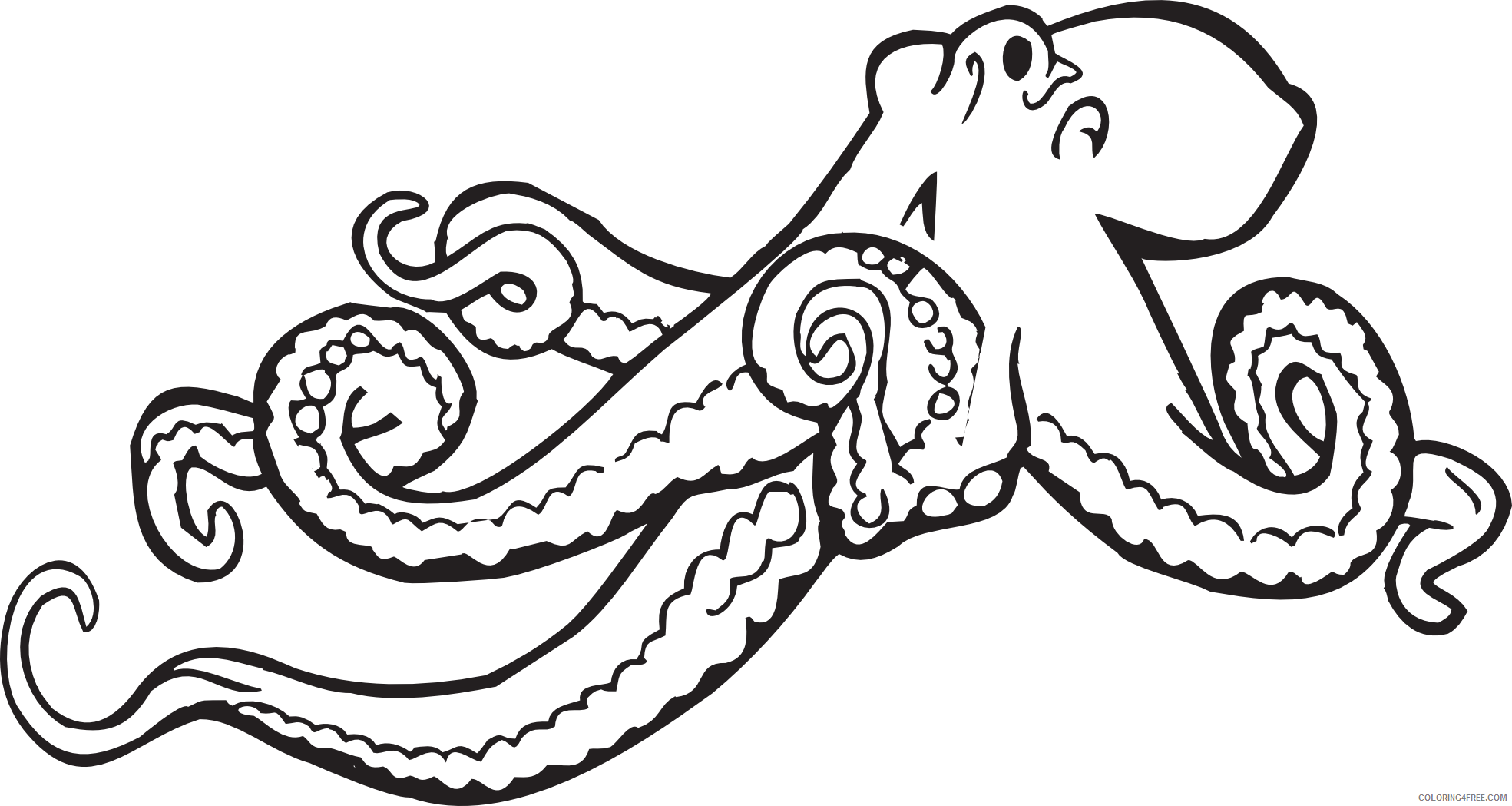 Octopus Outline Coloring Pages octopus black and Printable Coloring4free