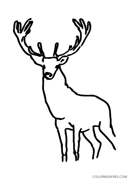 Quality Black and White Animals Coloring Pages stag png Printable Coloring4free