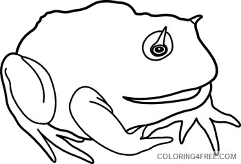Toad Coloring Pages animals toad 079mbw classroom clipart Printable Coloring4free