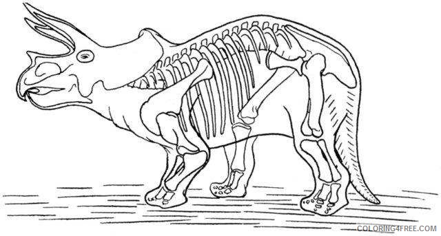 Triceratops Coloring Pages dinosaur skeleton of triceratops bYluFb Printable Coloring4free