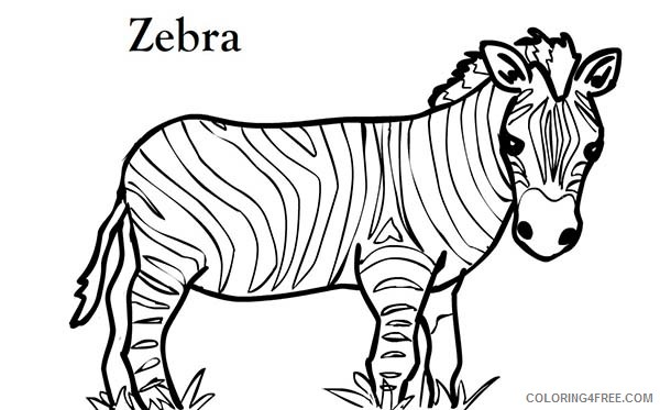Zebra Coloring Pages Zebra Short Zebra Printable Coloring4free -  Coloring4Free.com