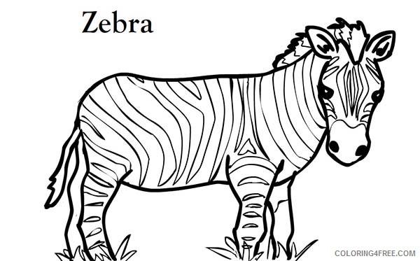 - Zebra Coloring Pages Zebra Short Zebra Printable Coloring4free -  Coloring4Free.com