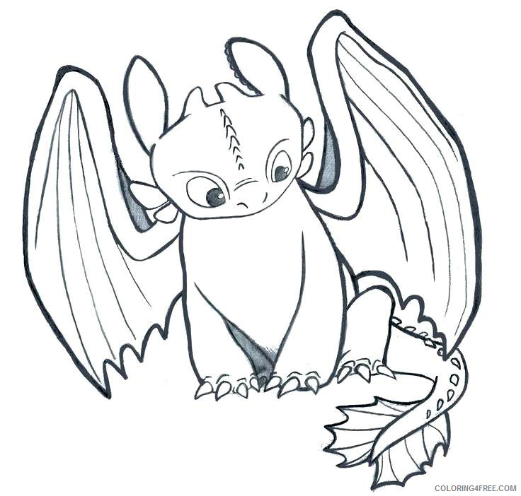 - How To Train Your Dragon Toothless Coloring Pages TV Film Printable 2020  03899 Coloring4free - Coloring4Free.com