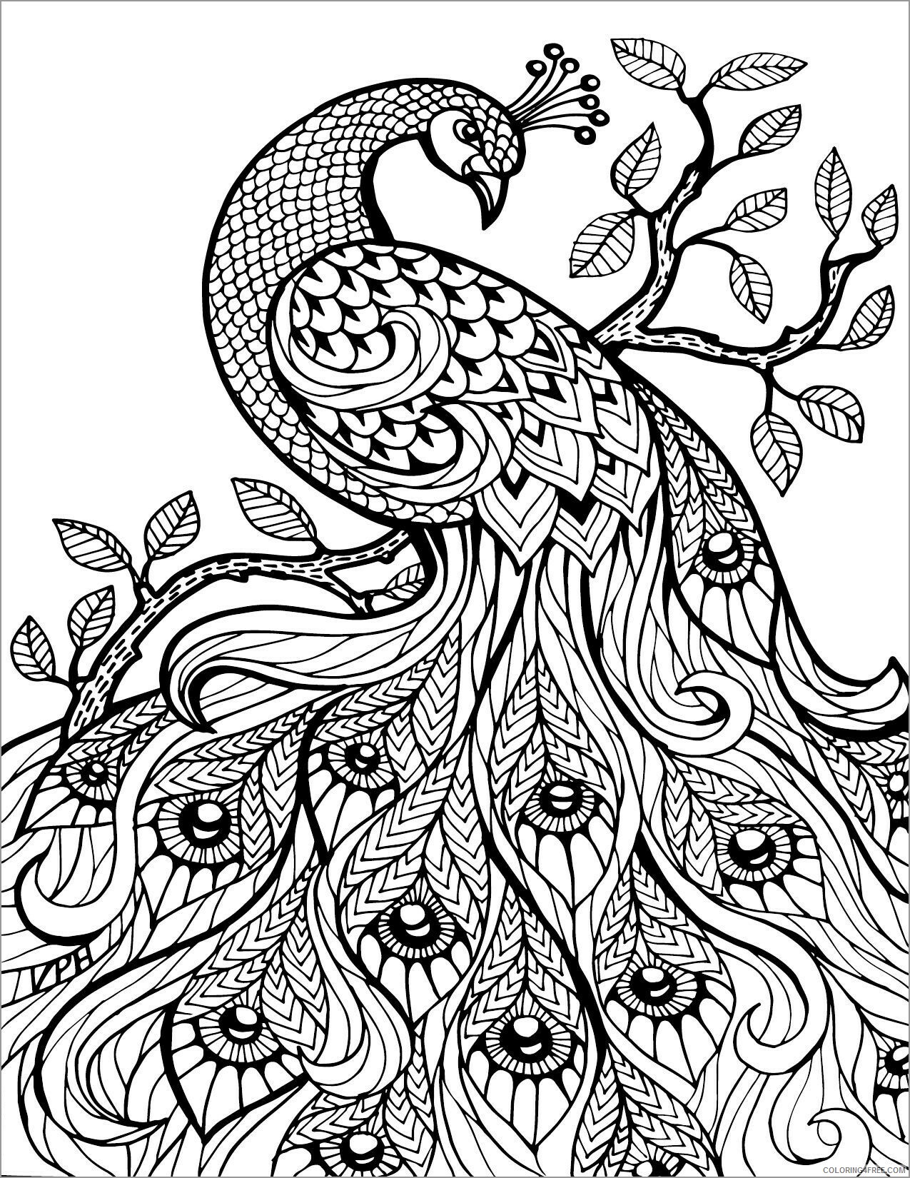 Abstract Coloring Pages Adult Abstract Animals Peacock Printable 2020 021 Coloring4free Coloring4free Com