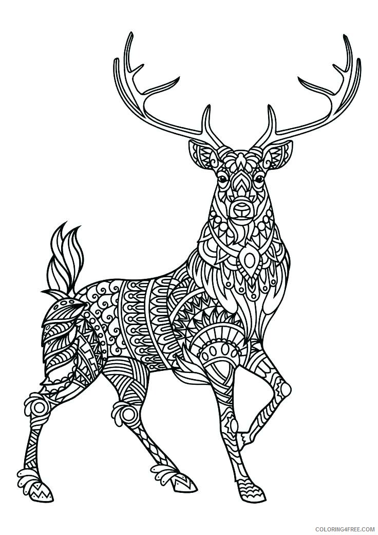 Adult Animals Coloring Pages Deer Animal for Adults Printable 2020 143 Coloring4free