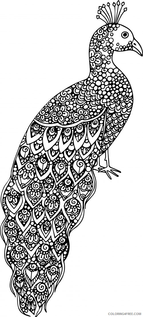 Adult Animals Coloring Pages Hard Of Animals For Adults Printable 2020 157  Coloring4free - Coloring4Free.com