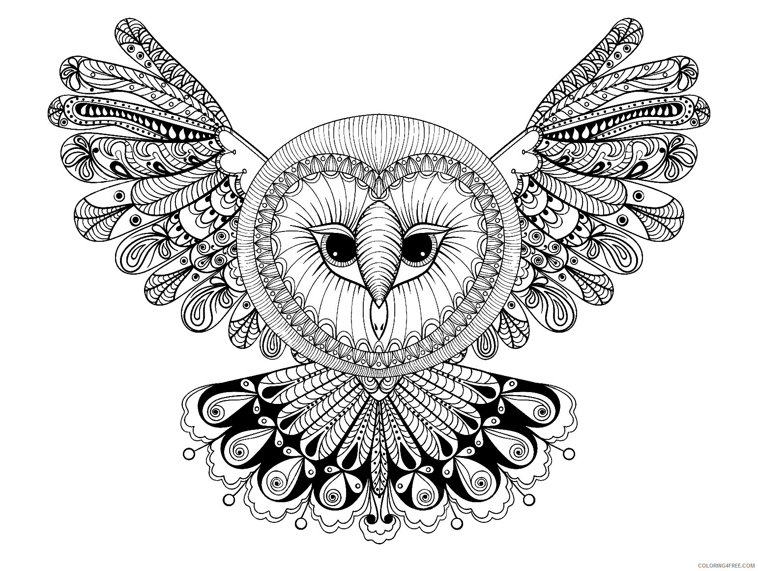 Adult Animals Coloring Pages Owl Animal for Adults Printable 2020 160 Coloring4free