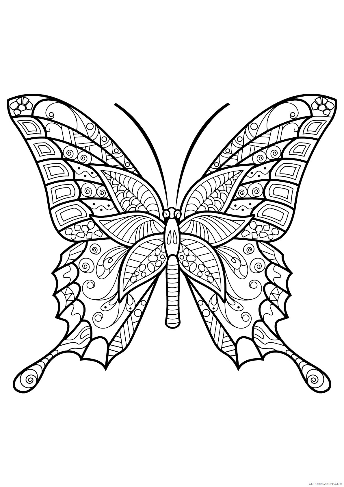 Adult Butterfly Coloring Pages Butterfly Adult Printable 2020 179 Coloring4free