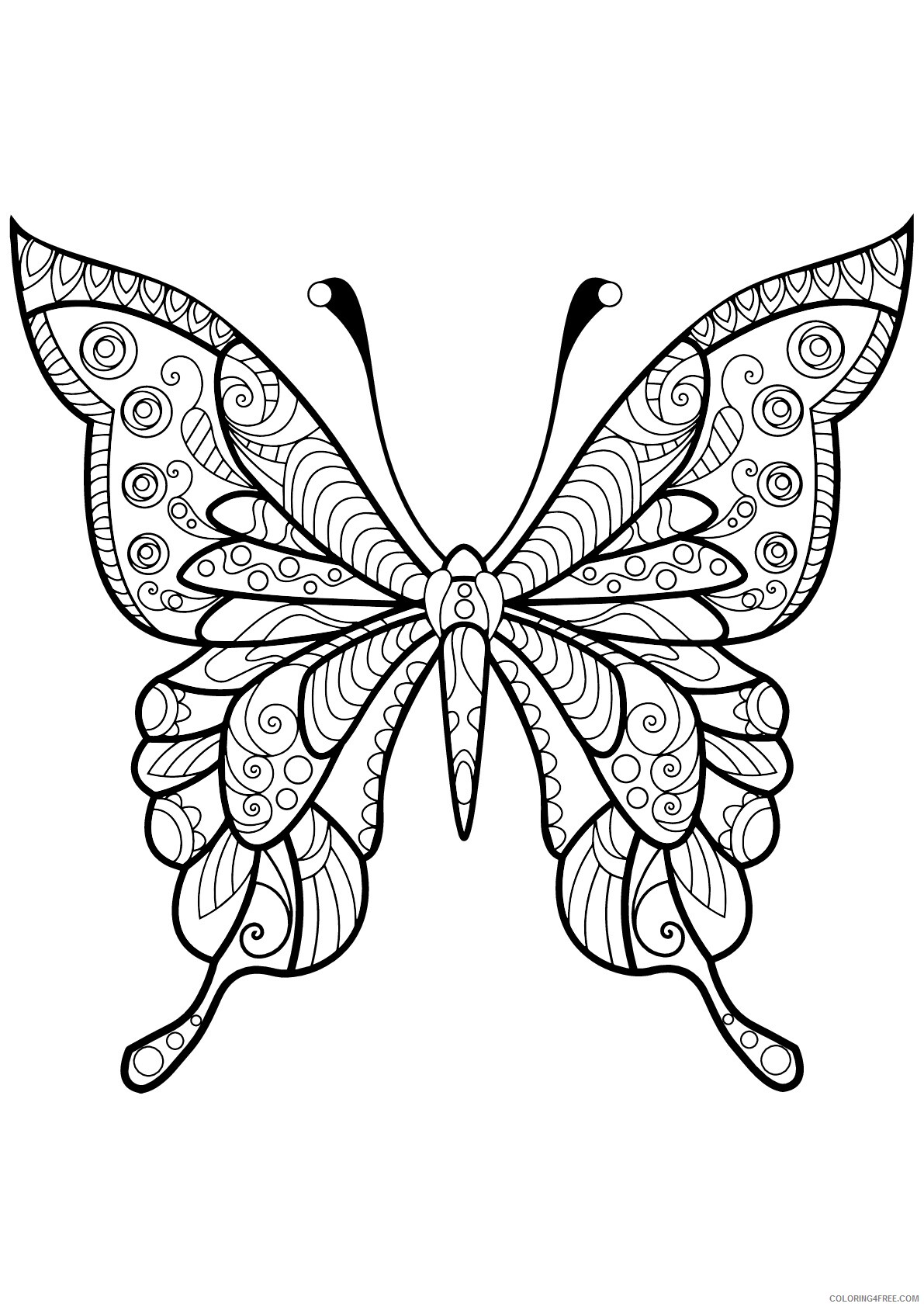 Adult Butterfly Coloring Pages Butterfly Design Adult Printable 2020 188 Coloring4free