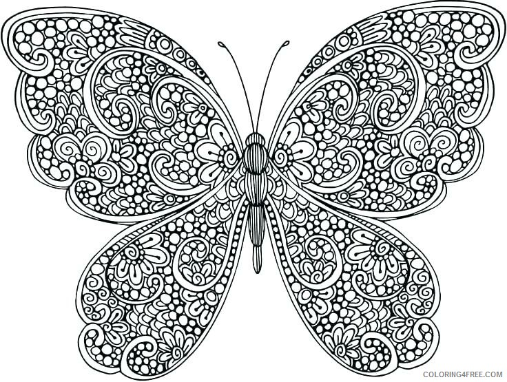 Adult Butterfly Coloring Pages Butterfly Design for Adults Printable 2020 189 Coloring4free