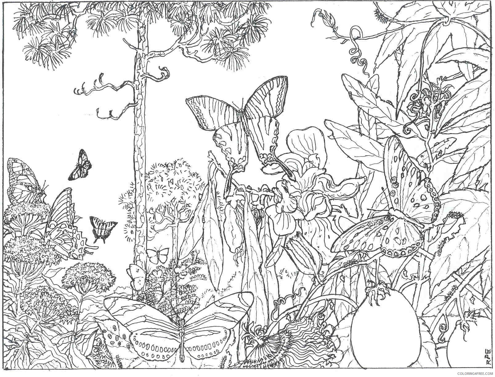 Adult Butterfly Coloring Pages Butterfly Scene for Adults Printable 2020 194 Coloring4free
