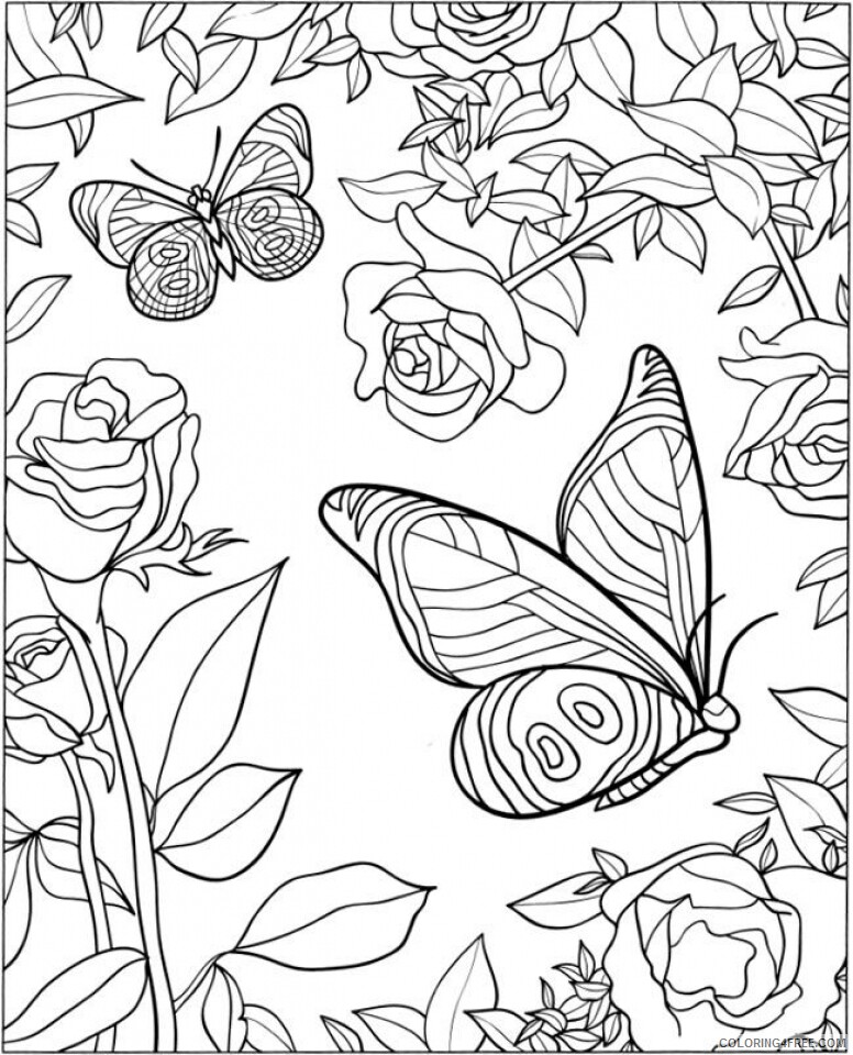 Adult Butterfly Coloring Pages Butterfly for Adults Printable 2020 185 Coloring4free